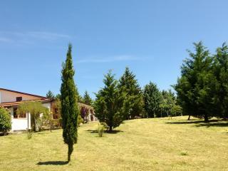 Tamerici House -camere nel verde - villino con 12 posti letto (3 suites 2+2), Montecastrilli