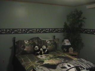 panda room in king mnt b&b, Moore