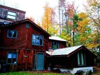 Rustic Killington Cabin - Golf, Hike, & Getaway!