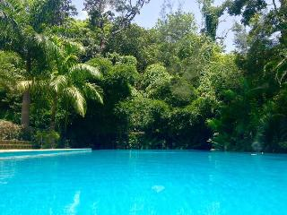 The Villa Goa - Luxury Private Indo-Portuguese Mansion with huge swimming pool