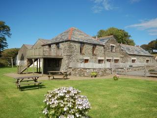 00597 Cottage in Boscastle, Otterham
