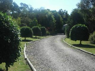 The driveway up to the cottages