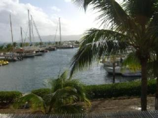 The Marina. Rent a wave runner. You can also book your fishing, snorkeling, BVI and dinner cruises