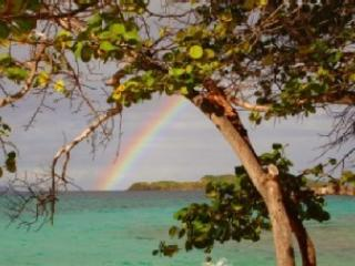 Paradise comes with rainbows