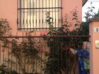 villino delle rose, Pavia