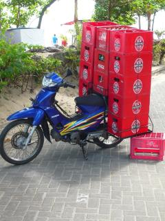 This is how they transport of Bintang beer