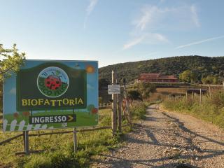 affittacamere biofattoria bosco felice