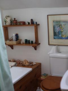 Wheems Cottage bathroom (small)
