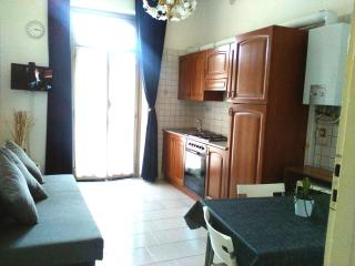 Nice and Confortable apartment, Turin