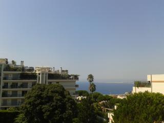 Grand appartement Nice Mont Boron proche du port, Niza