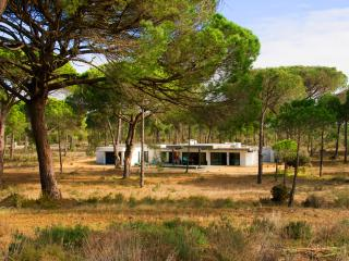 Luxury  Monte Verde Villa in Comporta