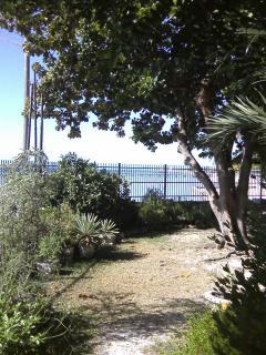 View from Martello garden