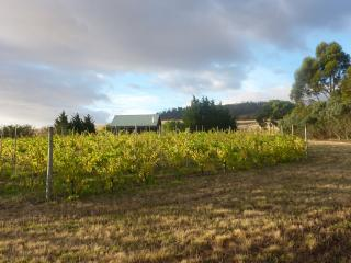 Spacious 2 bedroom cottage amongst the vines.