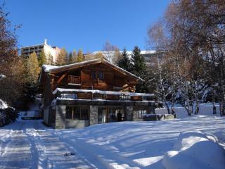 DUPLEX DANS LE CHALET LE CHANTELOUVE, Les Deux-Alpes