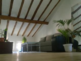 loft con encanto en el Logroño historico