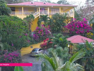 Hibiscus Heights - Warm Breezes, Tobago