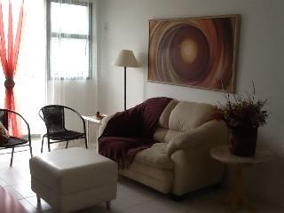 Cozy 2br Apartment Barra da Tijuca i03.032, Lumiar