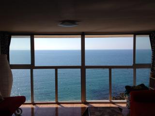 Alquiler estudio primera linea de playa, Alicante