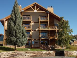 Ponderosa Condo-renovated 2 BR, hot tub, deck, views! Walk to slopes!, Crested Butte