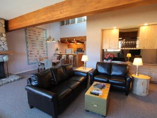 Fantastic 1 BR with loft.  5th nt free.  Walk to the slopes!  Hot tub!, Crested Butte