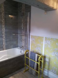 Over head shower and screen