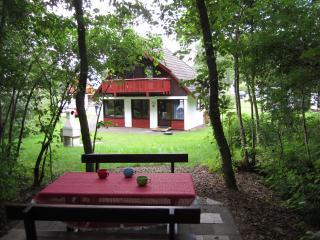 Ferienhaus 85 Silbersee, Frielendorf