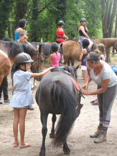 Pony riding and many other activities for children at nearby lac de Moulin blanc