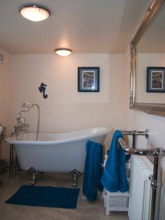 Downstairs bathroom with slipper bath and period fixtures.