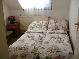 2 bedroom flat for 6 w/ free bikes, Debrecen