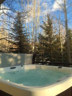 brand new 6 person jacuzzi on deck right off of living room