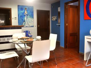 [84] Lovely one bedroom apartment with wifi, Seville
