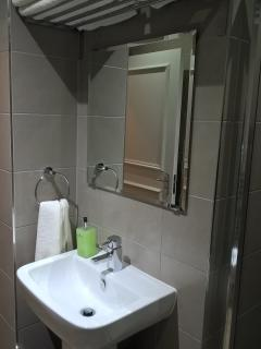 Bathroom with hand-basin, toilet, and heated towel rail
