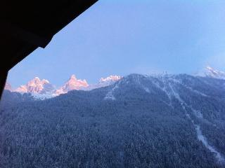 Chamonix - 1 bed apartment in central location