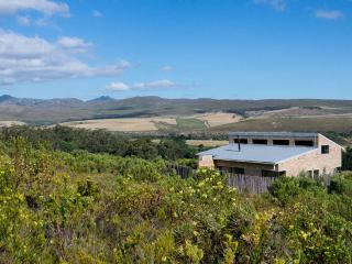 Phillipskop Mountain Reserve, Hermanus
