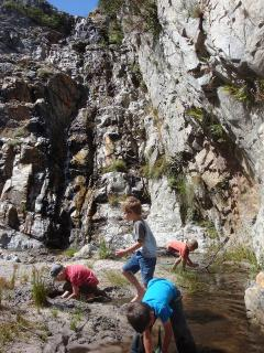 The waterfall provides plenty of opportunity for play