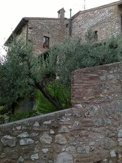 Edificio esterno  ( XV sec.) - External house (XV cent.)