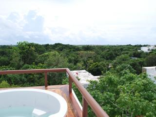 TAO ELEGANT PENTHOUSE WITH ROOFTOP TERRACE WITHIN GRAN BAHIA PRINCIPE RESORT, Akumal