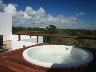 Summer Special!  Your TAO Inspired Lifestyle - PENTHOUSE  w/ Jetted Tub, Akumal