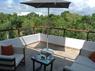 PENTHOUSE CONDO - AKUMAL - MAYAN RIVIERA - LOTS OF ROOM TO ENTERTAIN., Akumal