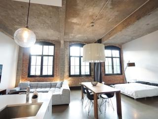 Beautiful Loft near Place des Arts and Old Port, Montreal