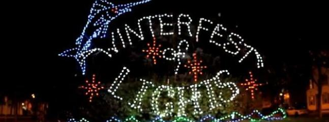 There's plenty of fun year round....including our Winterfest of Lights!