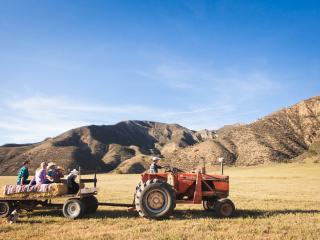 Bar SZ Ranch: Special Events, Paicines