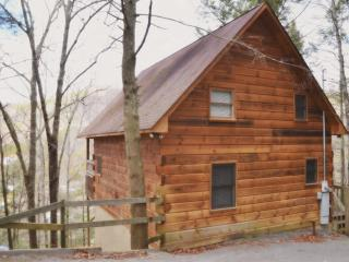 Misbehavin Cabin in the Pigeon Forge Area