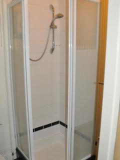 Master bathroom with toilet wash basin and shower