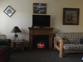 Electric Fireplace with Heatilator