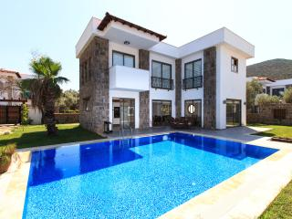 Detached Villa With Private Pool In The Bodrum
