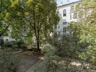 Spacious city center apartment Dmochowskiego 2 BR