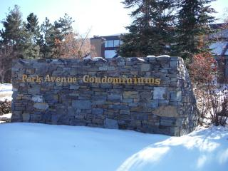 Welcome to Park Ave Condominiums - convenient location, steps from Summit County Shuttle & shopping.