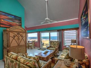 Serenity Breeze -Beachfront  Newly Remodeled!, Christiansted