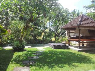 One Bed Room Pool Villa Rental Ubud Nice View